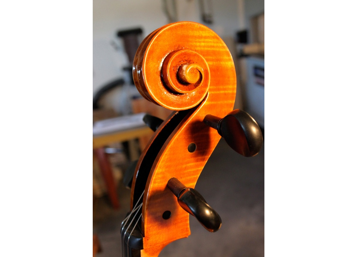 Mark Moreland Cello Scroll 2